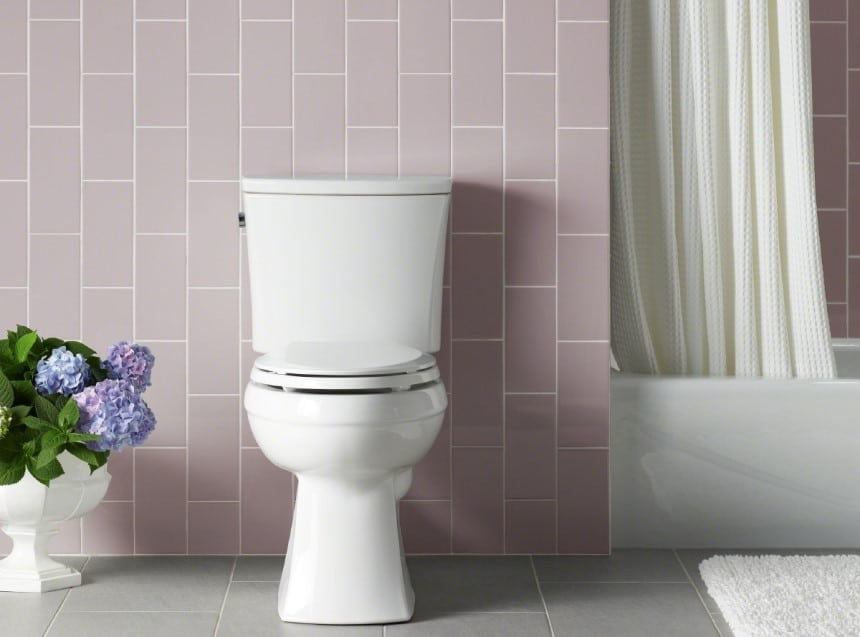 14 Best Comfort Height Toilets for Tall People or People with Mobility Issues