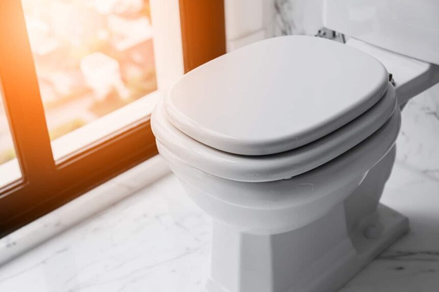 5 Excellent Toilet Seats for Heavy Person - Great Weight Capacity for Your Comfort