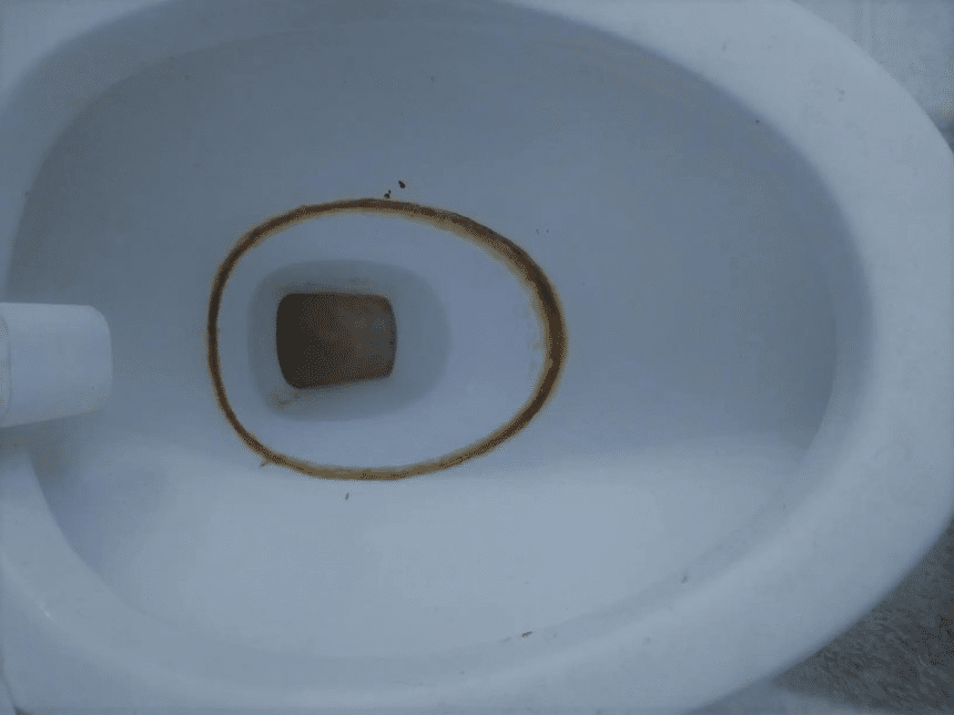 How to Get Rid of Toilet Ring and Never See It Again