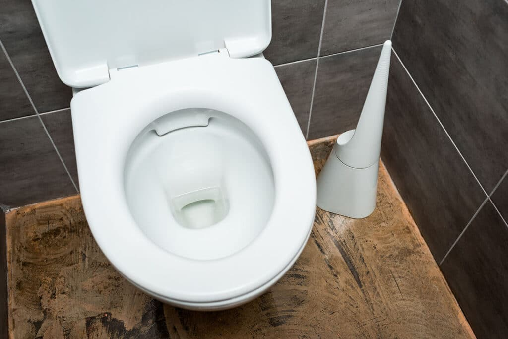 Round vs Elongated Toilet - Which Will Be Better for Your Bathroom?